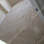 Ashburn-Carpet-Clean-room