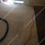 Ashburn-Traffic-Area-carpet-cleaners