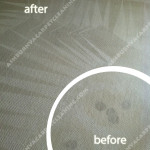 Ashburn-Wine-Stain-Carpet-Cleaning