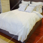 Bed-Cleaners-Ashburn