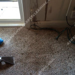 Oil-Stain-Removal-After-Ashburn